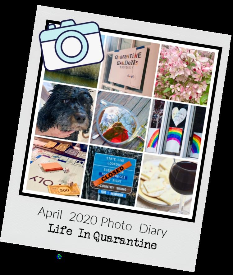 APRIL 2020 PHOTO DIARY: LIFE IN QUARANTINE | Ms. Toody Goo Shoes