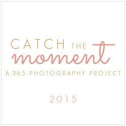 BTCAD- Catch the Moment