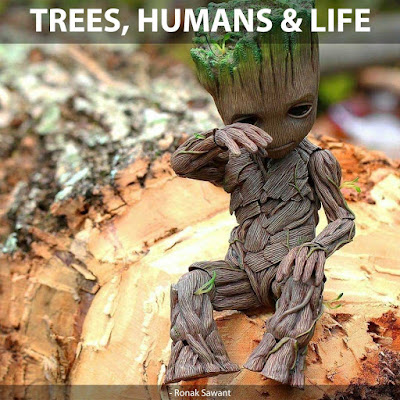 "Cover Photo: ""Trees, Humans & Life"" - Ronak Sawant"