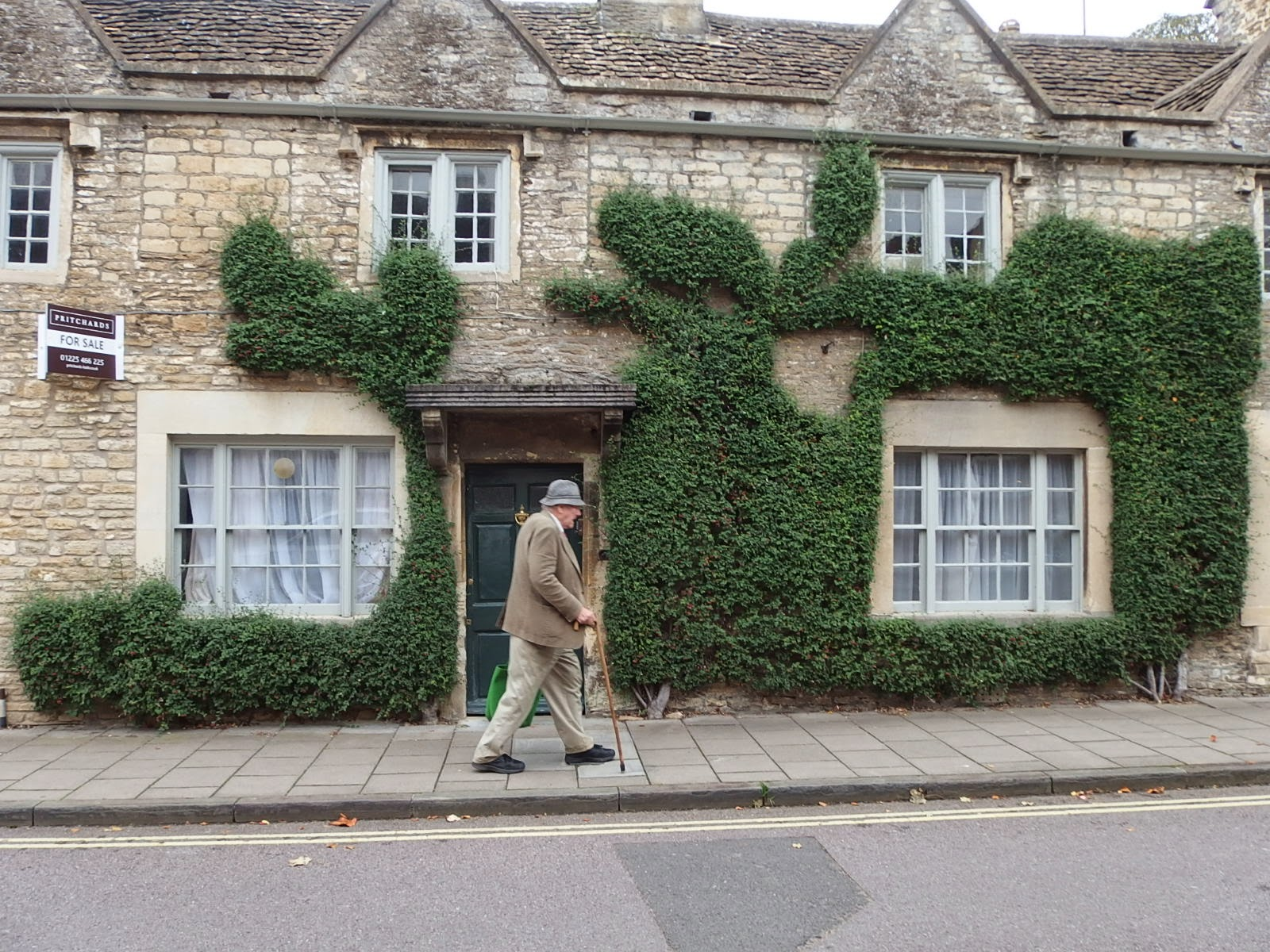 Photo of 3 cotoneaster shrubs clothing a building on Corsham High Street