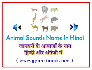 Animal Sounds In Hindi