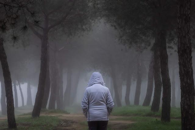 En la niebla - Pepe García