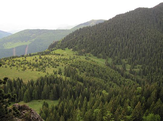 Widok na przełęcz Medzirozsutce (1200 m n.p.m.).