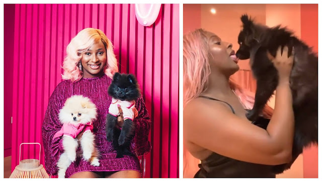 Fans reacts as DJ Cuppy was seen kissing her puppy Dudu (Video)