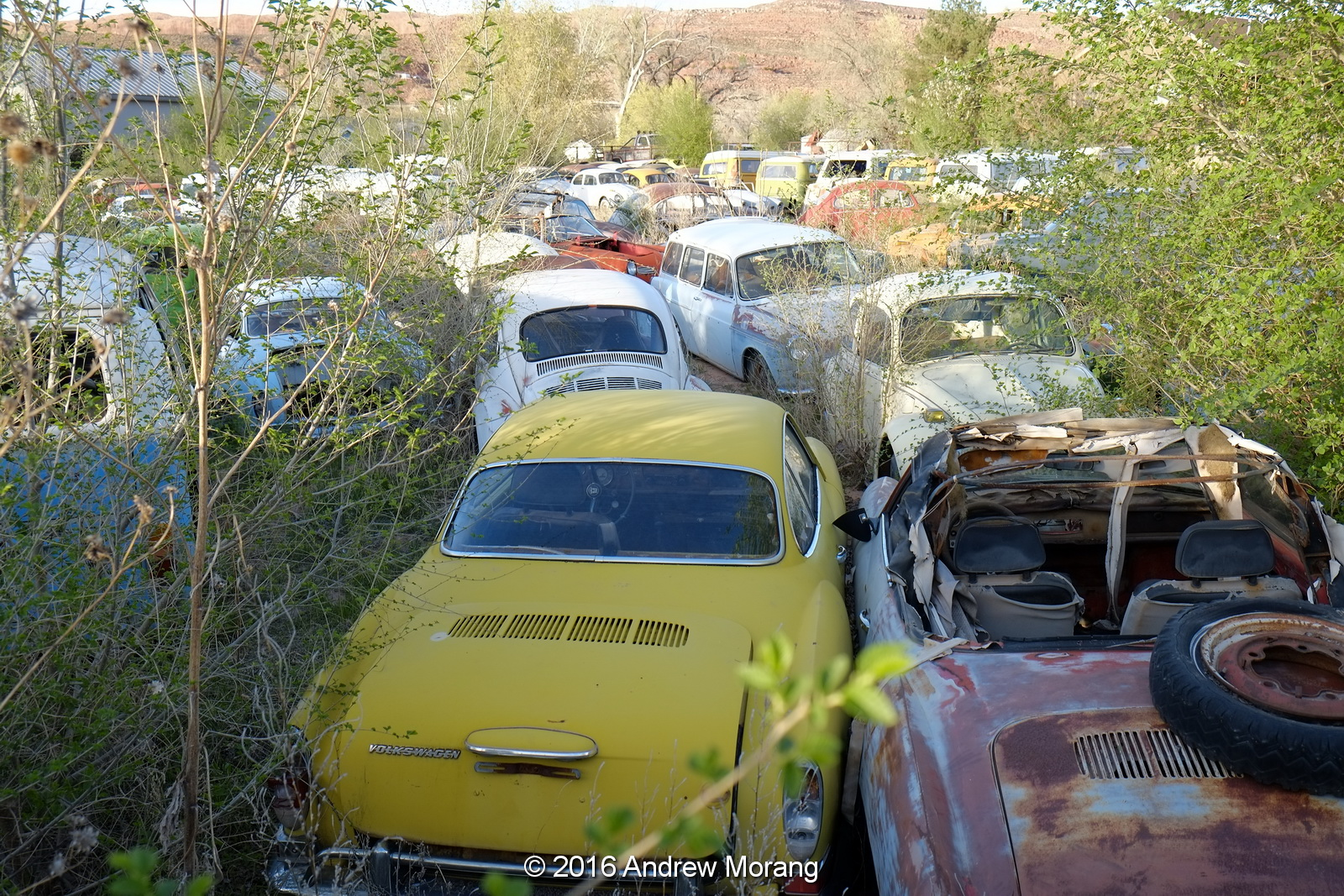 Urban Decay The Volkswagen Disposal Yard Of Moab Utah - Moab utah car show