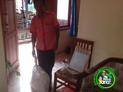 Kang Mumu dari INDAH Cargo jemput benih padi Trsakti pesnan mas Sigit.