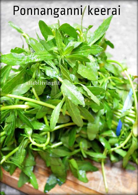 Ponnanganni keerai/Dwarf Copper Leaf