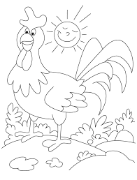 Best Image And Photo Of Rooster in Garden Coloring Book
