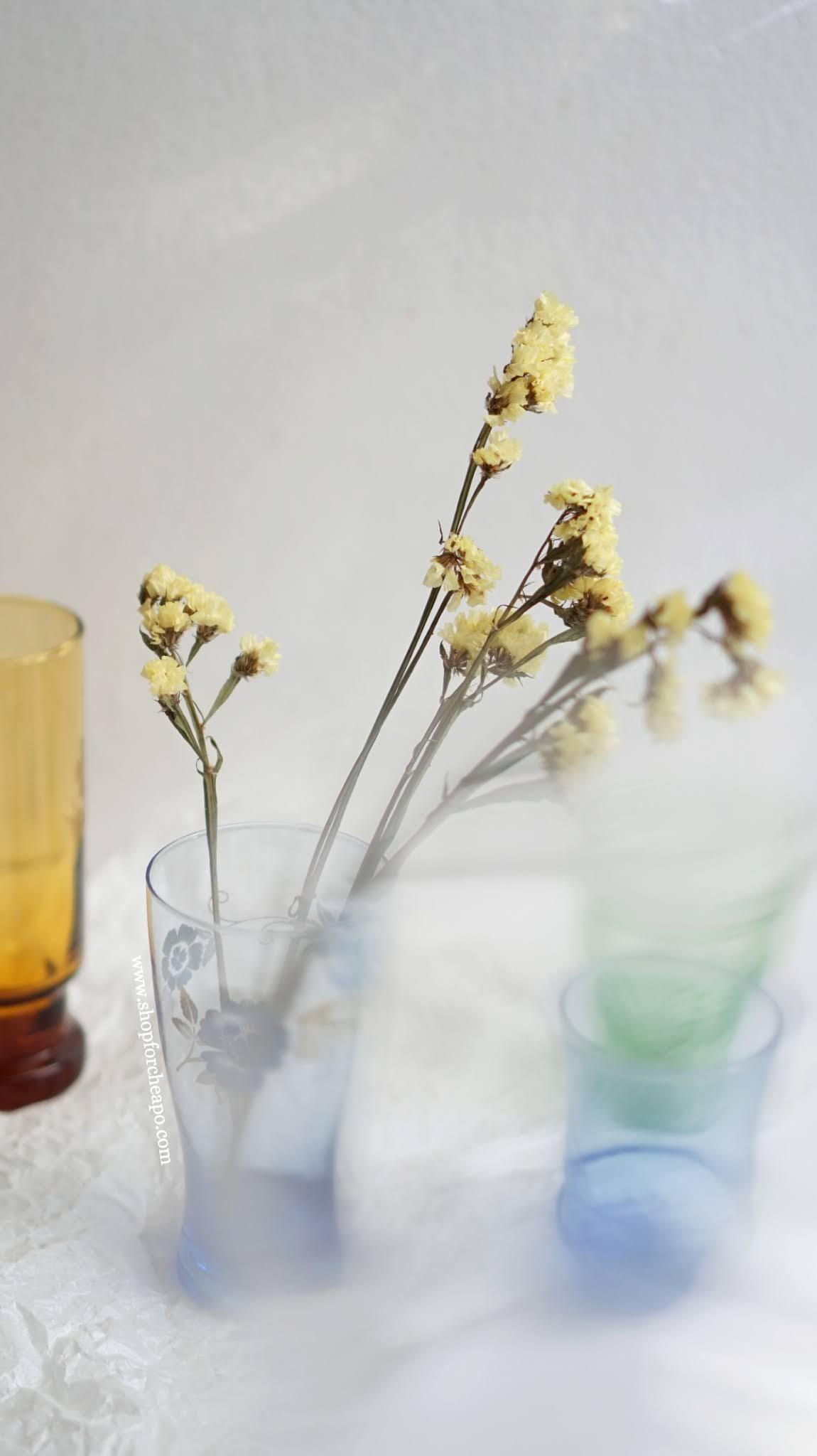 bunga kering statice yellow di dalam vas gelas