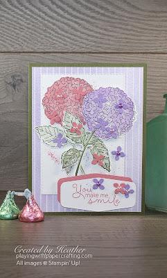 hydrangea haven bundle creates spring beauty 1