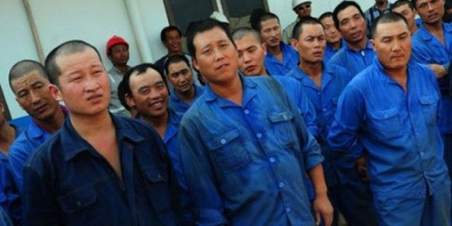 IPW Apresiasi Kapolsek Muara Pawan Yang Usir TKA China, Beda Dengan Kapolda Sultra