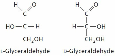l glucose fischer projection - photo #27
