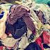 大量の衣類入った箱がベッドに落下、家族3人死亡 スペイン