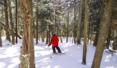 Skiing the Cave Glade at Gore Mountain.  The Saratoga Skier and Hiker, first-hand accounts of adventures in the Adirondacks and beyond, and Gore Mountain ski blog.