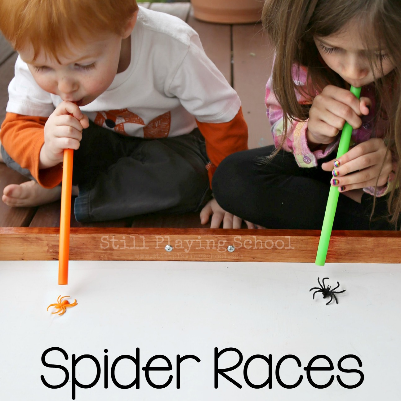 Spider Races