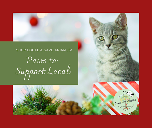 Paws to Support Local Renfrew County OSPCA Christmas fundraiser