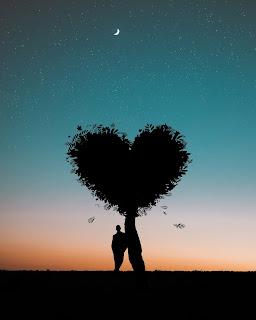 man-leaning-on-heart-shaped-tree, single-man