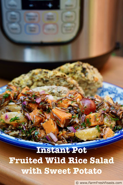 This vegan and grain free Instant Pot salad combines chewy wild rice and tender sweet potato with grapes and clementines in a lemony herb dressing.