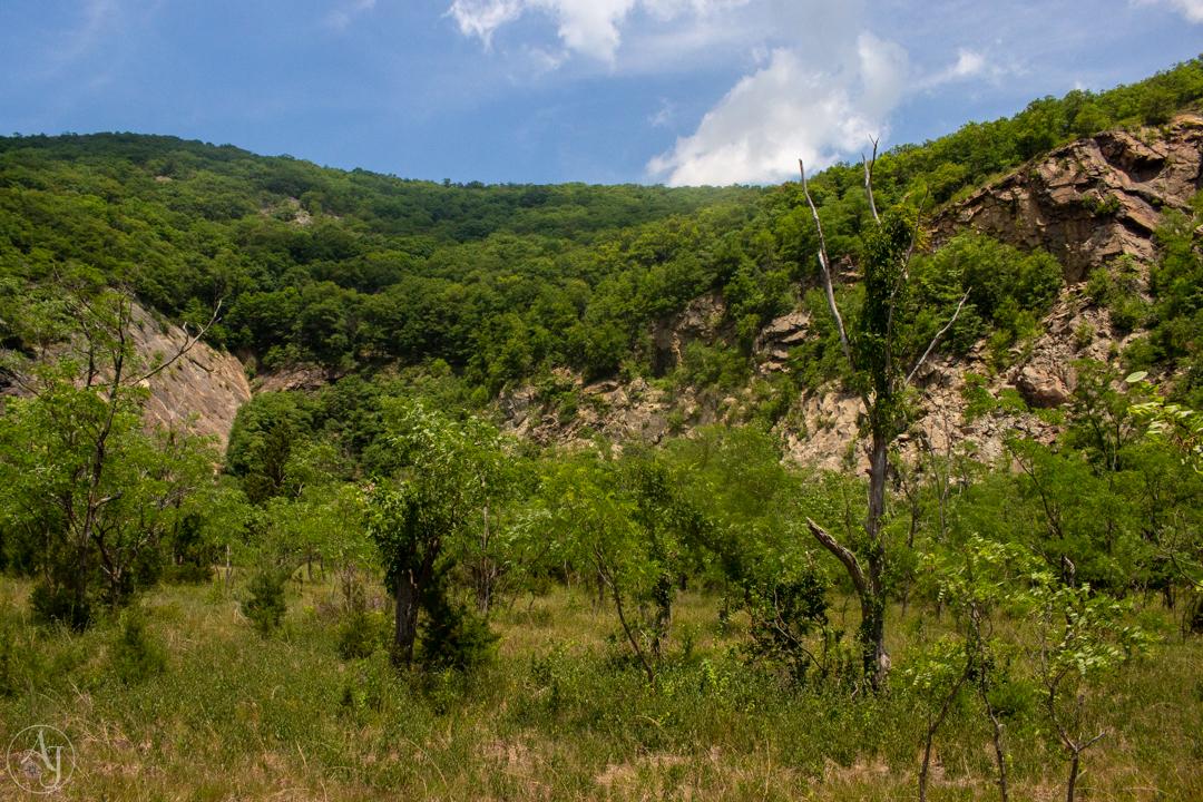Bull Hill Mountain