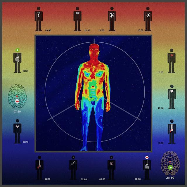 el cuerpo humano, la luz solar, ritmos biologicos