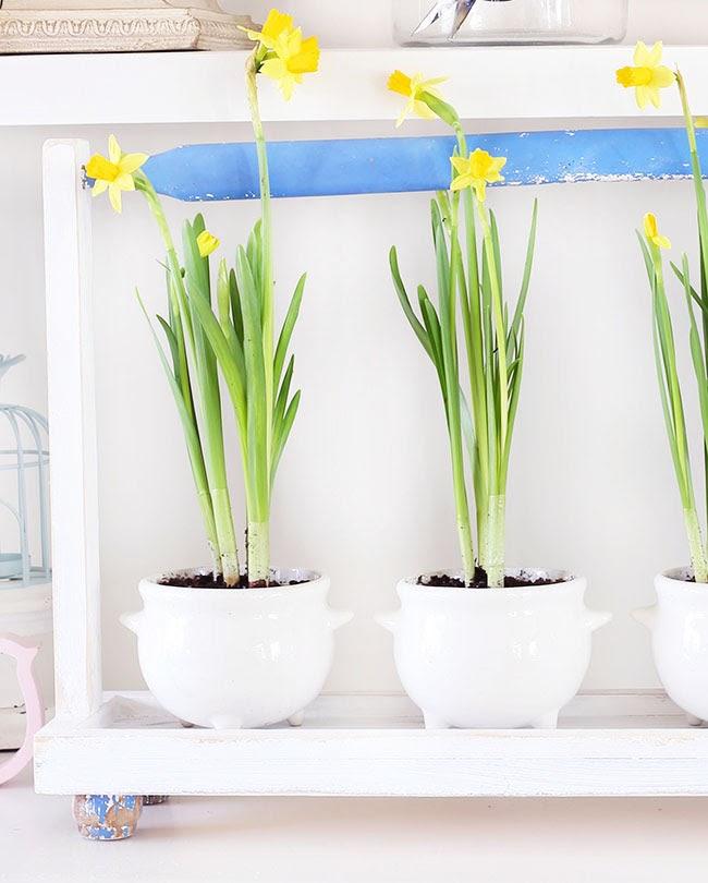 RemodelaCasa | DIY Plant Tray