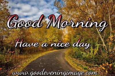 Good morning nature pics download