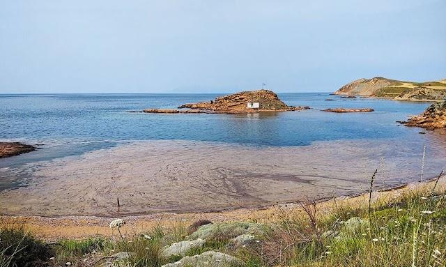 Λήμνος: Ενθαρρυντικά τα στοιχεία για τη «βλέννα» στις παραλίες – Δεν είναι τοξική, έχει διαλυθεί