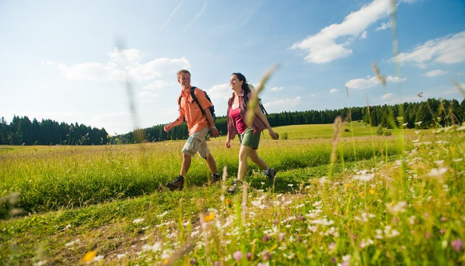 šetanje-hodanje-zdravlje-srce
