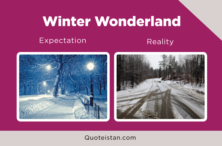 Expectation Vs Reality: Winter Wonderland