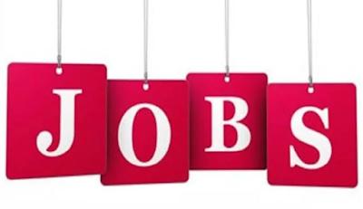 IBPS RRB Jobs