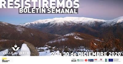 VALLE DEL JERTE, BOLETÍN SEMANAL (24 a 30 de diciembre 2020)