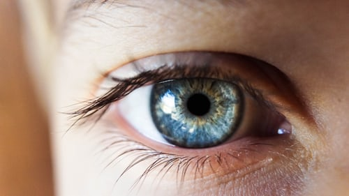 Understanding Eye Anatomy - Protective Role Of Cornea In Vision Function