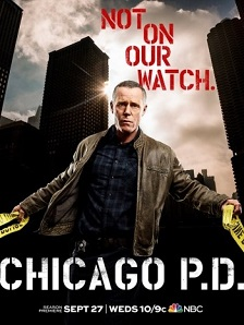 Chicago PD 5ª Temporada (2017) Legendado HDTV | 720p – Torrent Download