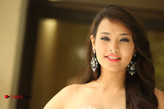 Actress Sagarika Pictures in Short Dress at Friend Request Press Meet  0377.JPG