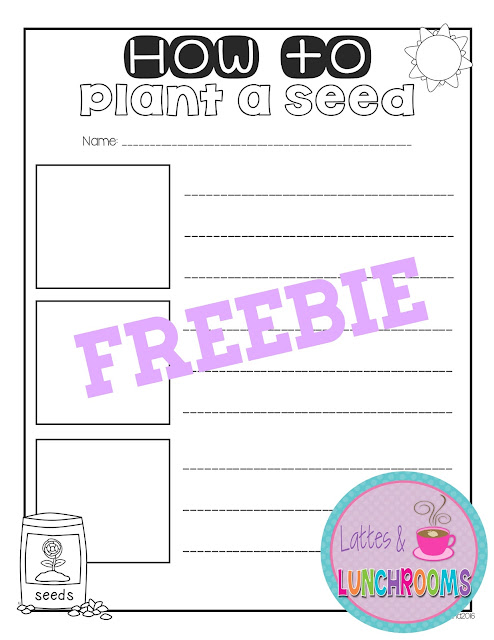 How to Plant a Seed {Quick FREEBIE Post}