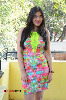 Telugu Actress Prasanna Stills in Short Dress at Inkenti Nuvve Cheppu Press Meet Stills  0129.JPG