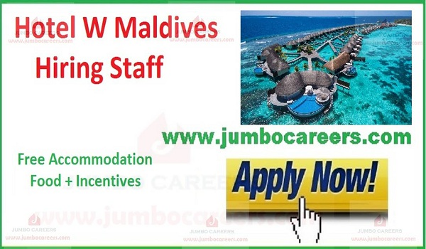 Hotel jobs with free food and accommodation,