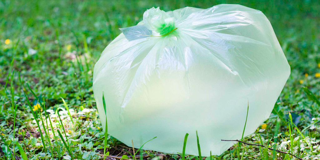 Manufacturing of biodegradable bags