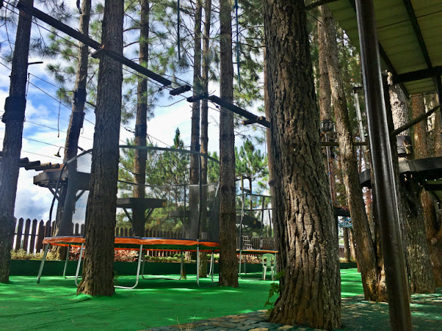 Dahilayan Forest Park Bungee Bounce and Net Trampoline