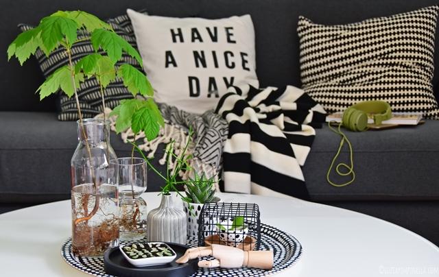 interior | wohnen mit pflanzen - ahorn-bäumchen im glas und sukkulenten-ableger | | luziapimpinella.com for #urbanjunglebloggers