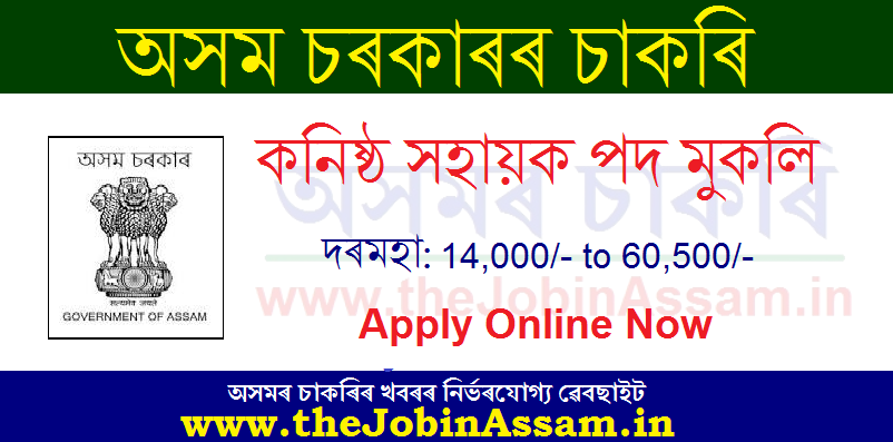 Deputy Commissioner, Hilakandi Recruitment 2020