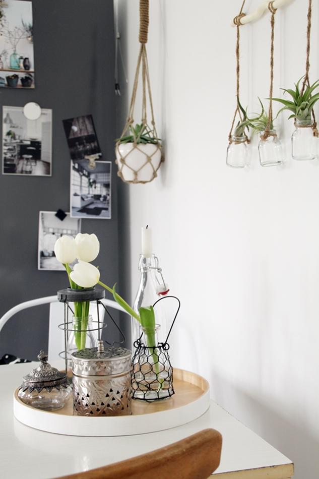 Luftpflanzen, Makramee Blumenampel