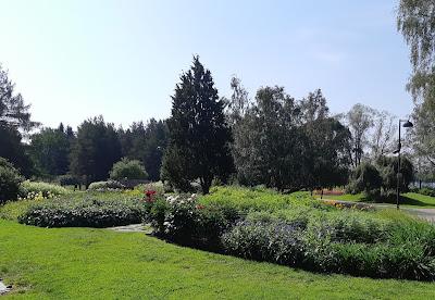 Kukkia ja vehreyttä Hatanpään arboretumissa
