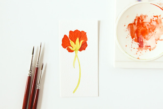 watercolor, watercolor flowers, watercolor nasturtiums, mini paintings, 30 paintings 30 Days, Anne Butera, My Giant Strawberry