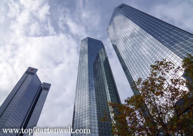 Soll- und Haben - die Hochhäuser der deutschen Bank - Blog Topfgartenwelt