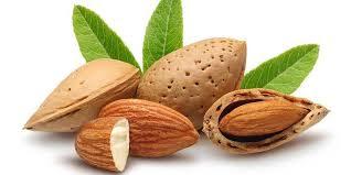 الأطعمة والأعشاب والنصائح التي تقوي ذاكرة الإنسان - لتقوية الذاكرة والذكاء وسرعة الحفظ