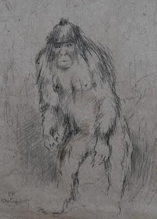 yeti-sketch