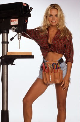 Favorite Tool Time Girl Heidi Or Lisa Phish Discussion Topic On