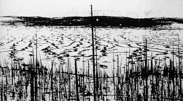 Artículo: El infierno vuela sobre Tunguska 1