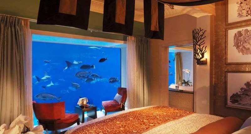 Aquarium in the wall  making a wall mounted fish tank. How to make wall aquarium and wall fish tank DIY